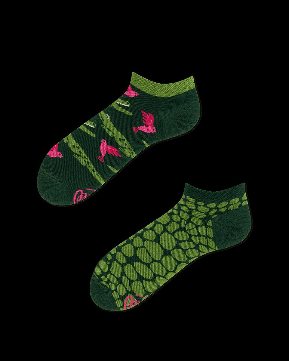 zielone skarpetki w krokodyle