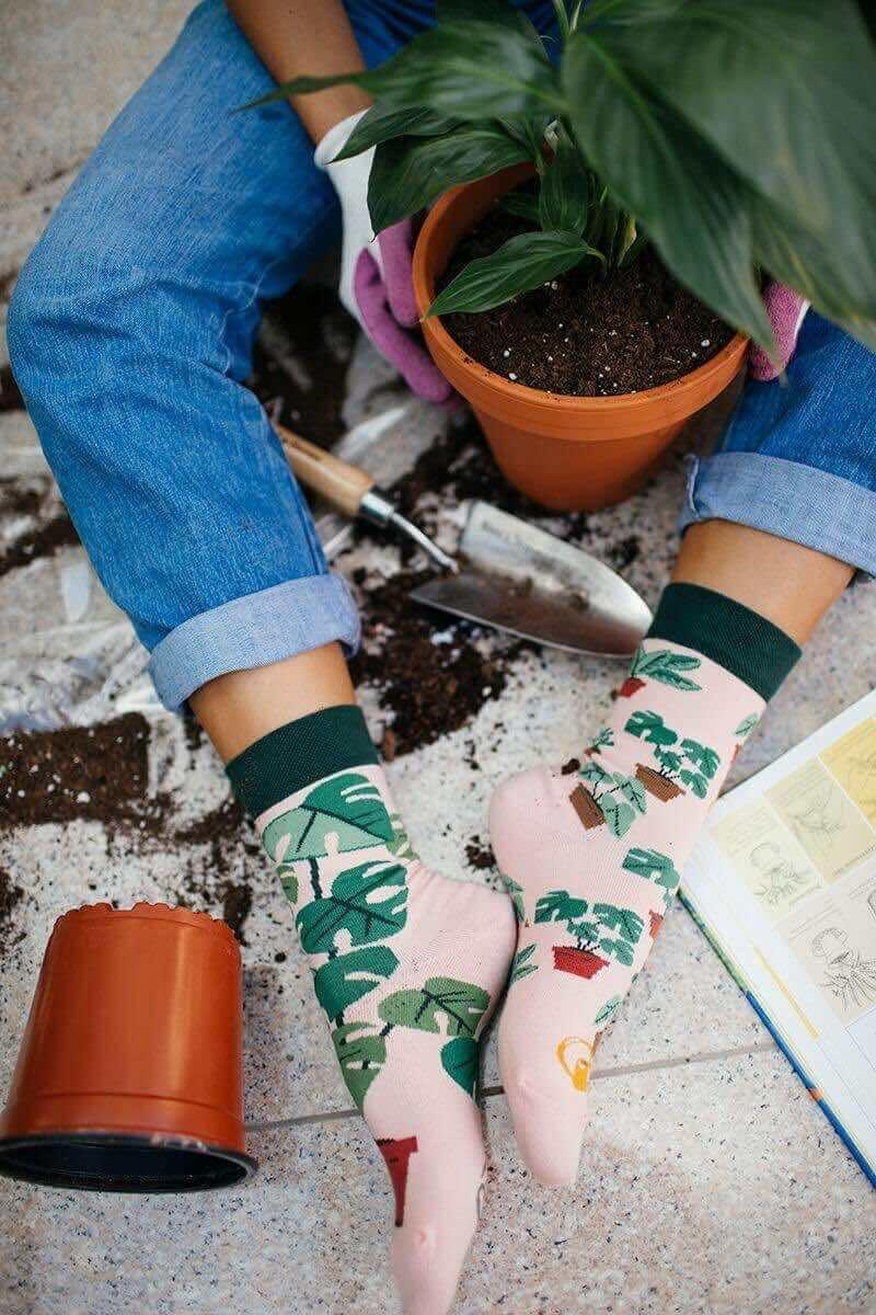 najlepsza strona internetowa produkty wysokiej jakości nowe tanie PLANT LOVER