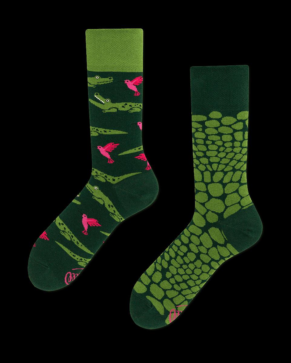 zielone skarpetki w krokodyla