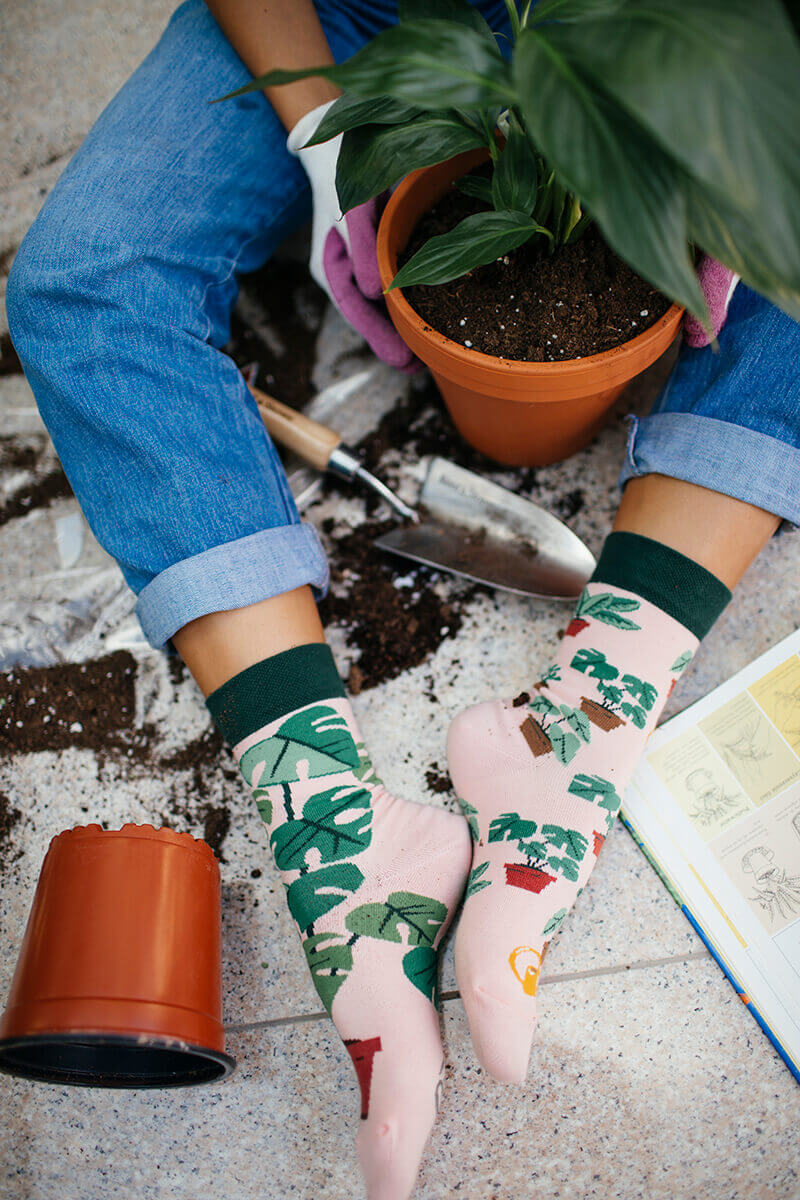 PLANT LOVER - Skarpetki w rośliny doniczkowe