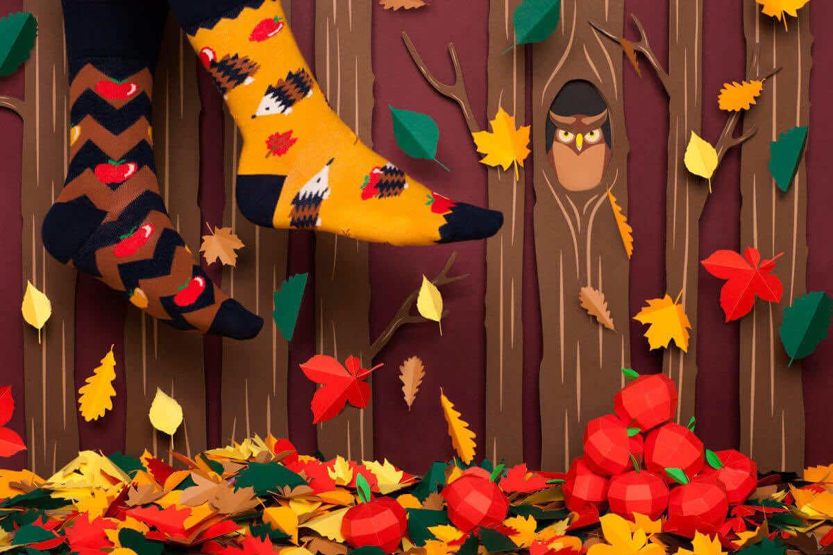 APPLE HEDGEHOG KIDS - Hedgehog kids socks