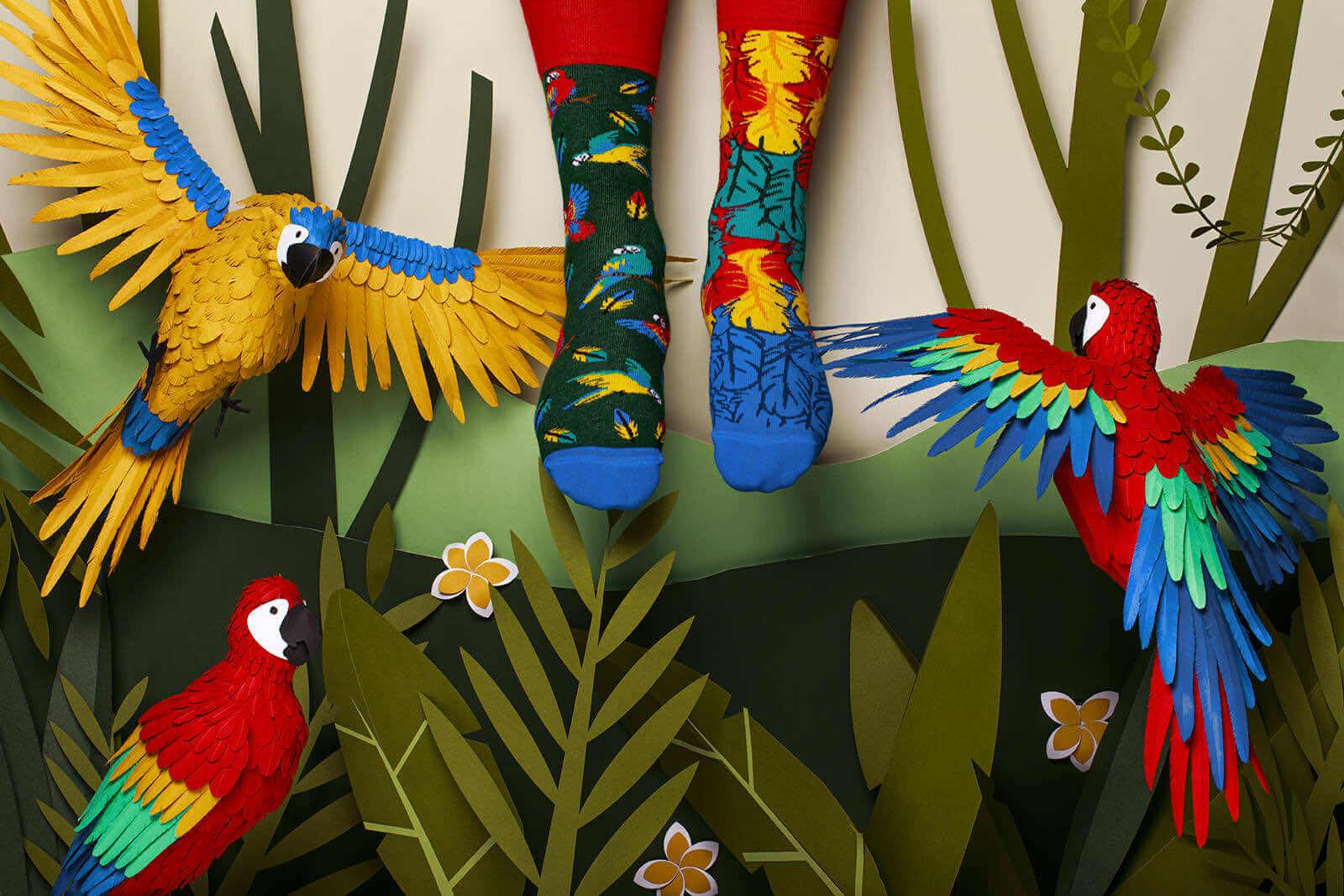 PARADISE PARROT - Skarpetki z papugą