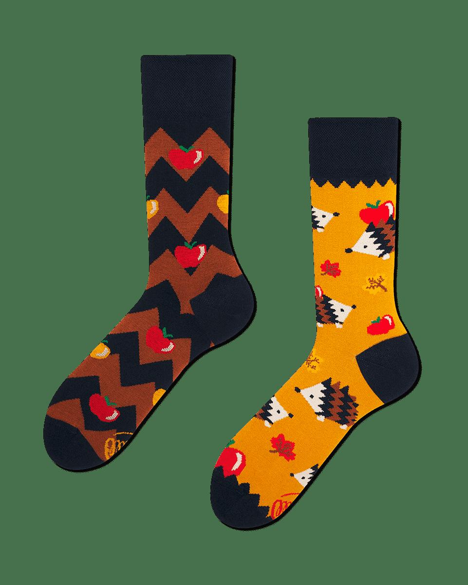 APPLE HEDGEHOG - Sokken met egels