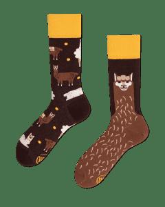 FLUFFY ALPACA - Calcetines con alpacas