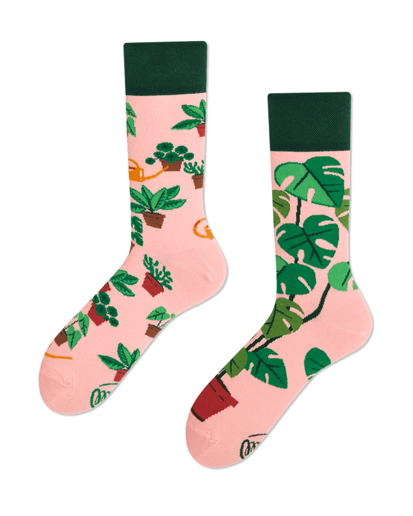 PLANT LOVER - Chaussettes motif plantes en pot