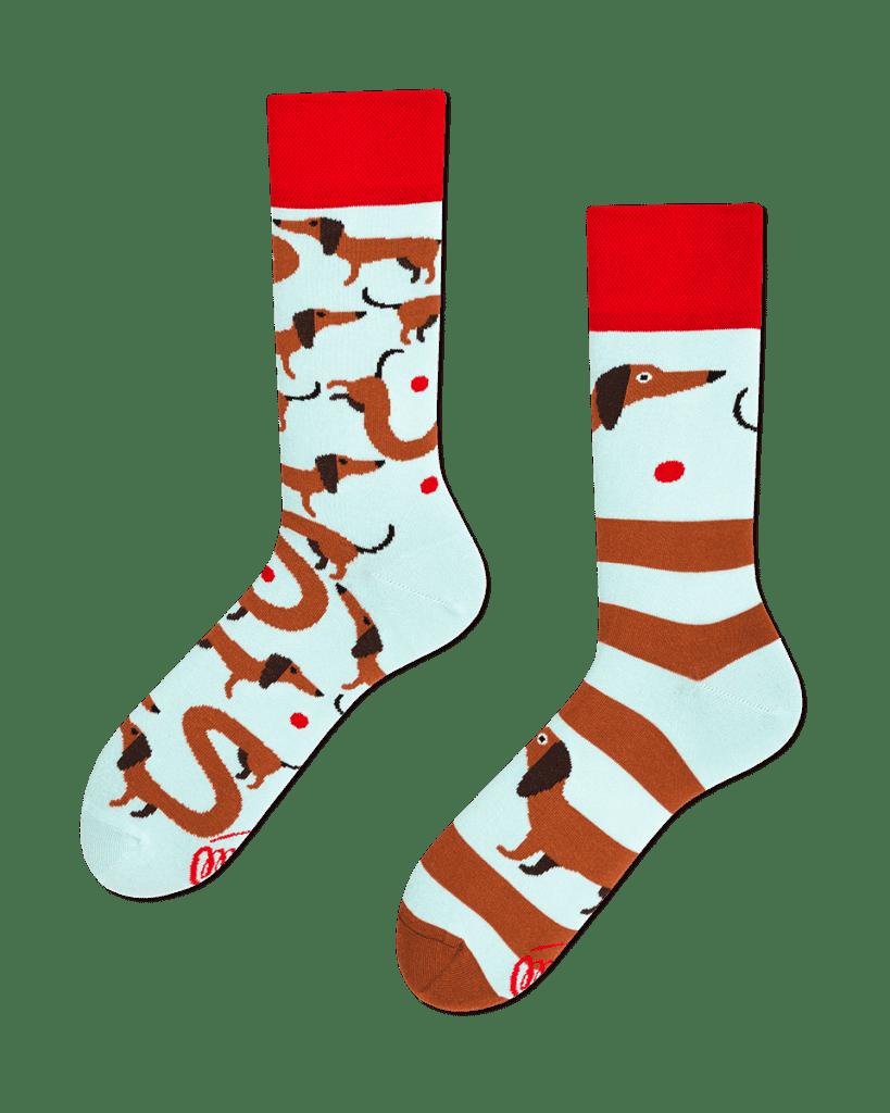 SAUSAGEDOG - Sokken met teckels
